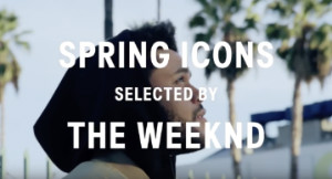 H&M: Spring Icons